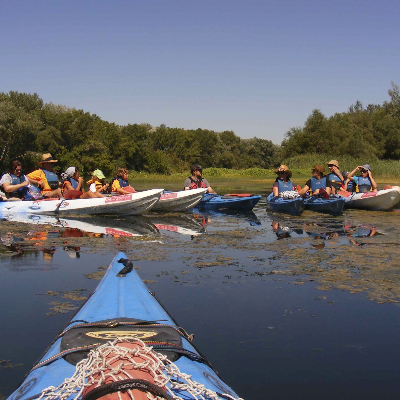 Terra Enllà ofrece distintas explicaciones sobre la lucha de los pontoneros republicanos durante la batalla del Ebro.